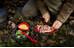 Primus Meal Set Röd (734000)